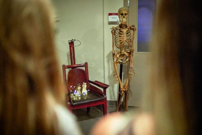 Rsu Museum Of Anatomy Participates In Museum Night For The First Time